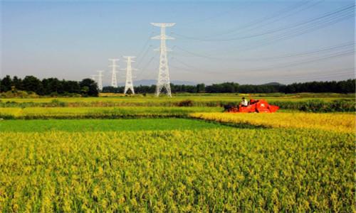 农行发放首笔贷款助力农业规模化经营